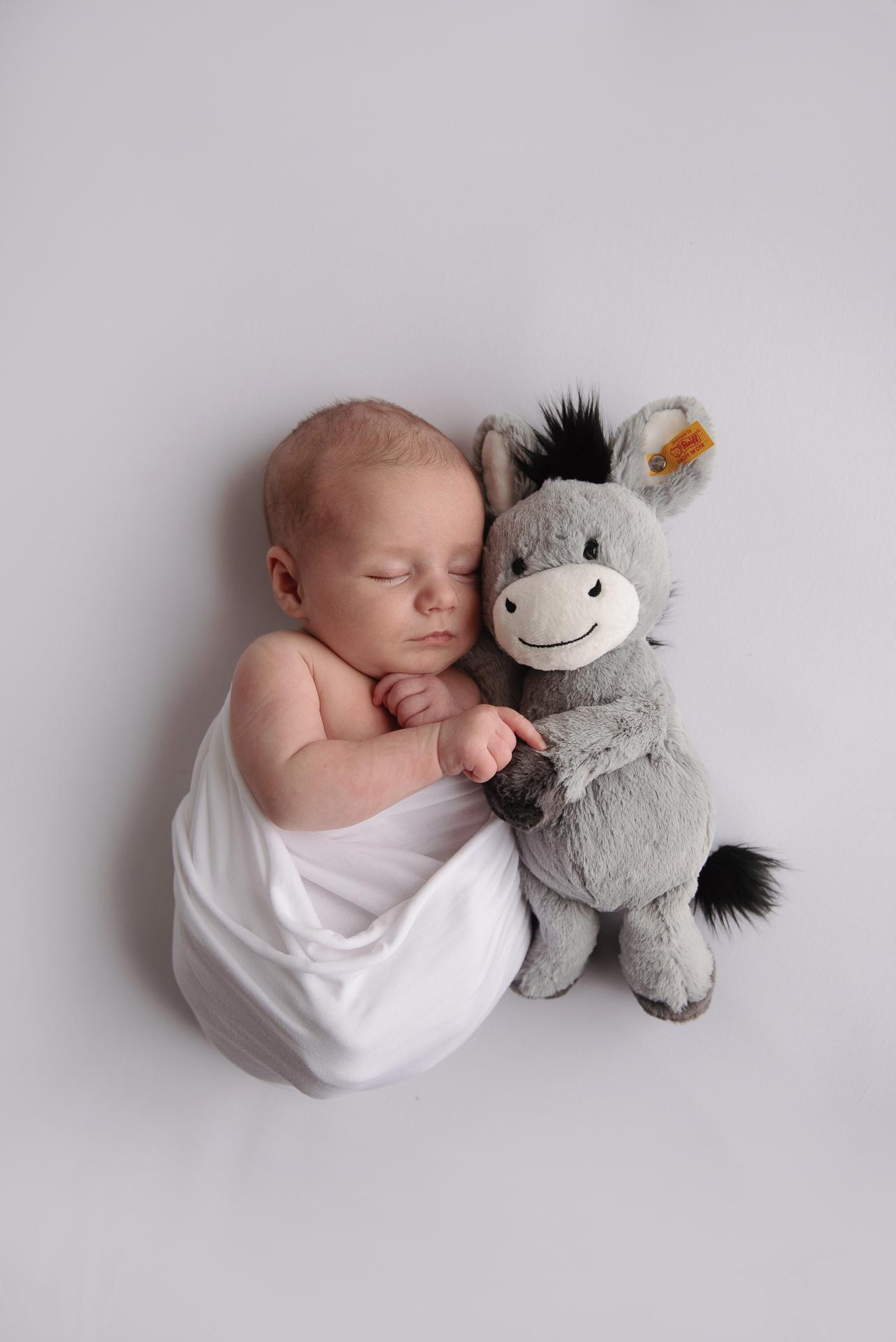 Newborn Baby and Cuddly Toy